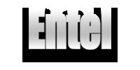 Network-Entel